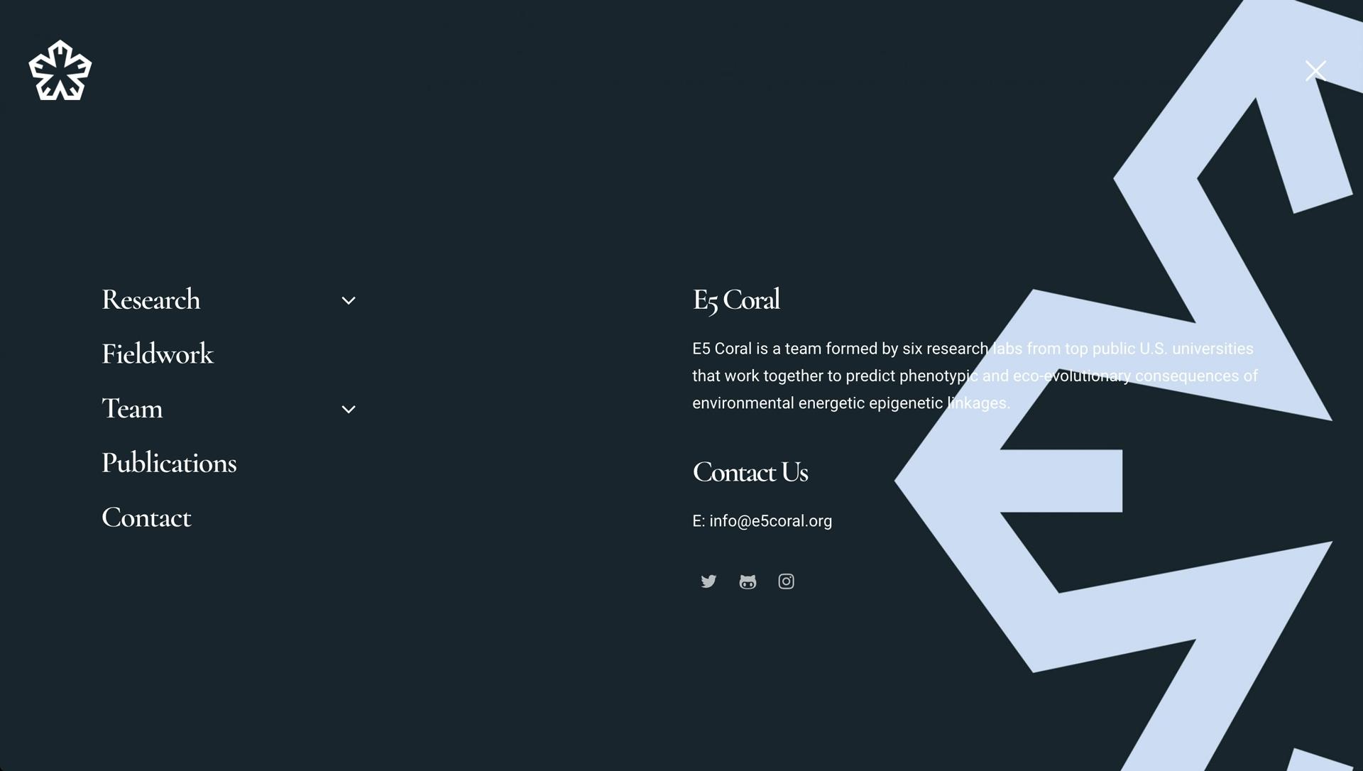 Web Design E5 Coral
